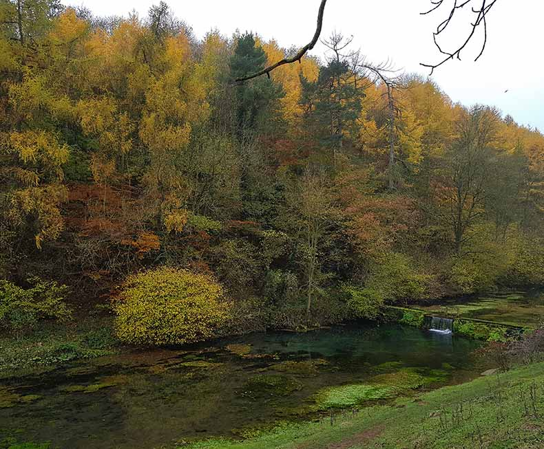 View of autumn trees and river at Lathkill Dale Peak District