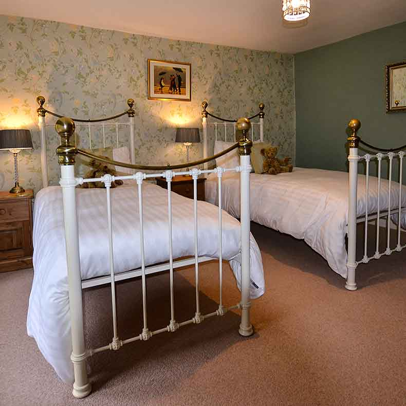 2 single beds with brass bedsteads in green bedroom