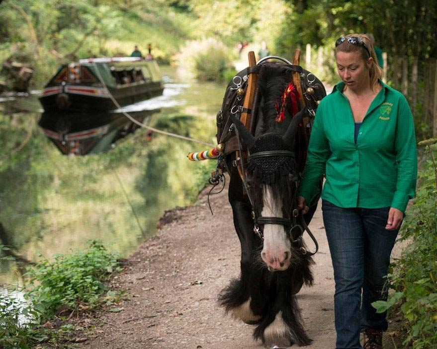 Horse pulling canal boat on Cromford Canal