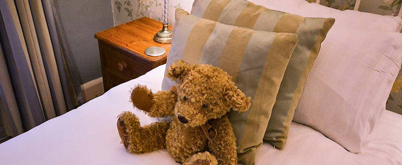 Teddy on a bed at Derwent House